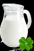 lait-enpoudre